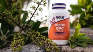 What is Alpha GPC good for?